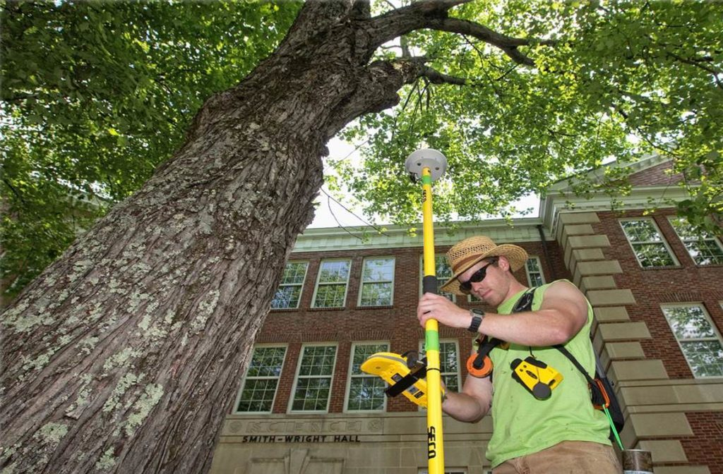 Arborist Consultations-Beaumont Tree Trimming and Stump Grinding Services-We Offer Tree Trimming Services, Tree Removal, Tree Pruning, Tree Cutting, Residential and Commercial Tree Trimming Services, Storm Damage, Emergency Tree Removal, Land Clearing, Tree Companies, Tree Care Service, Stump Grinding, and we're the Best Tree Trimming Company Near You Guaranteed!