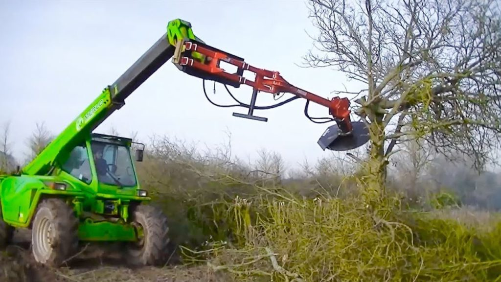 Tree Trimming-Beaumont Tree Trimming and Stump Grinding Services-We Offer Tree Trimming Services, Tree Removal, Tree Pruning, Tree Cutting, Residential and Commercial Tree Trimming Services, Storm Damage, Emergency Tree Removal, Land Clearing, Tree Companies, Tree Care Service, Stump Grinding, and we're the Best Tree Trimming Company Near You Guaranteed!