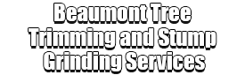 Beaumont Tree Trimming and Stump Grinding Services Logo-We Offer Tree Trimming Services, Tree Removal, Tree Pruning, Tree Cutting, Residential and Commercial Tree Trimming Services, Storm Damage, Emergency Tree Removal, Land Clearing, Tree Companies, Tree Care Service, Stump Grinding, and we're the Best Tree Trimming Company Near You Guaranteed!