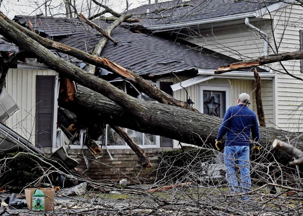 Storm Damage-Beaumont Tree Trimming and Stump Grinding Services-We Offer Tree Trimming Services, Tree Removal, Tree Pruning, Tree Cutting, Residential and Commercial Tree Trimming Services, Storm Damage, Emergency Tree Removal, Land Clearing, Tree Companies, Tree Care Service, Stump Grinding, and we're the Best Tree Trimming Company Near You Guaranteed!